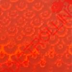 19-116-SM5
